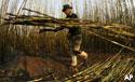 Brazilian sugarcane harvester