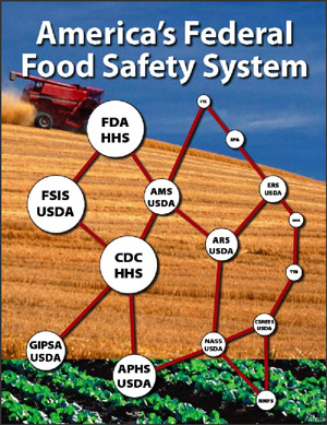 federal food safety system
