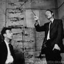 Watson and Crick with their model of the double helix