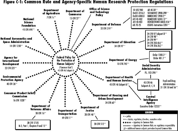 diagram of agencies that follow the federal Common Rule for human subjects research